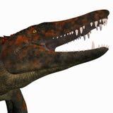 Tête de dinosaure d'Uberabasuchus Images libres de droits