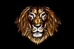Tête de lion du feu Photo libre de droits