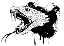 Tête de serpent Photos libres de droits