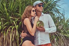 Attractive couple, holds coconut with a tube, posing on a beach near palm bush, enjoys a vacation on a beautiful island. An ttractive couple, holds coconut with Royalty Free Stock Photo