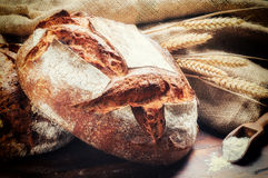 Free Ttraditional Bread In Rustic Setting Stock Image - 36461271