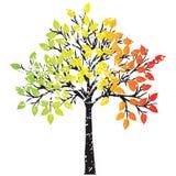 Ttree en colores del rasta Fotografía de archivo