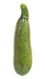 Tuétano vegetal Fotografía de archivo