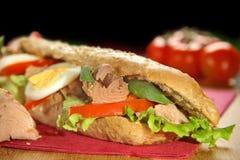 Tuńczyk kanapka obrazy stock
