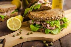Tuńczyk kanapka zdjęcie stock