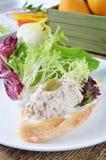 Tuńczyk kanapki Fotografia Royalty Free
