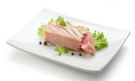 Tuńczyk polędwicowy Obraz Royalty Free
