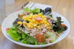 Tuńczyk rozmaitości sałatkowy kolorowy na stole Zdjęcia Stock