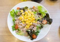Tuńczyk rozmaitości sałatkowy kolorowy na stole Fotografia Stock