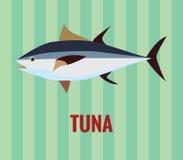 Tuńczyk ryba Zdjęcia Stock
