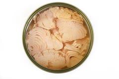 Tuńczyk ryba w oleju na tle Obraz Royalty Free