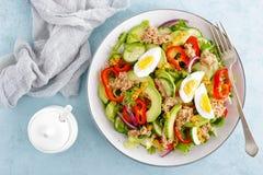 Tuńczyk sałatka z gotowanym jajkiem i świeżymi warzywami dietetyczne jedzenie zdrowe potrawki kuchni grecki mięso greccy moussaka obrazy royalty free