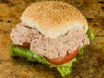 Tuńczyk sałatka Z Pokrojoną pomidoru i sałaty Chlebowej rolki Sezamową kanapką babeczki lub Fotografia Royalty Free