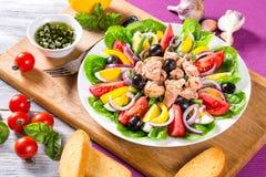 Tuńczyk sałatka z sardelami, jajka, czarne oliwki, pomidory, olej, basil, czosnek, ocet Fotografia Stock
