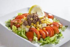 Tuńczyk sałatka z warzywami Obraz Royalty Free