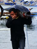 Tuńczyka żółtopłetwowy tuńczyka artisanal rybołówstwo w Philippines-28 Zdjęcie Stock
