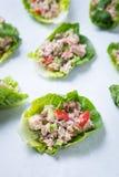 Tuńczyka ogórka pieprzu opakunki zdjęcie royalty free