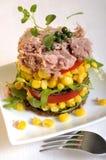 tuńczyka sałatkowy warzywo Zdjęcia Stock