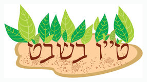 Tu-bi-shvat. Tu bi-Shvat, in the Jewish tradition - New Year's trees Stock Images