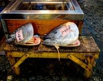 Tuńczyka HeadsTsukiji Rybi rynek Tokio Obraz Royalty Free