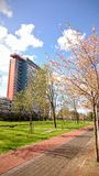 TU Delft kampus Obraz Royalty Free