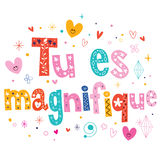 Tu es magnifique French love phrase Stock Images