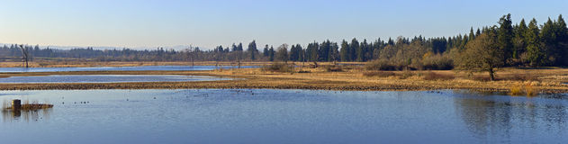 Tualatin national wildlife refuge Oregon. Royalty Free Stock Images
