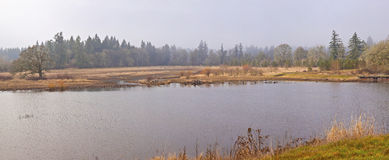 Tualatin national wildlife refuge Oregon. Royalty Free Stock Image