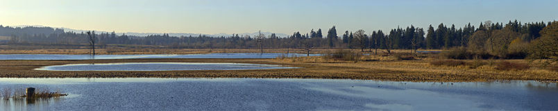 Tualatin national wildlife refuge Oregon. Tualatin national wildlife and refuge panorama Oregon Stock Photography