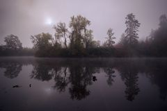 Tualatin river in the morning fog royalty free stock image