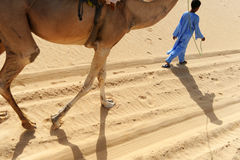 Tuareg με την καμήλα του Στοκ φωτογραφίες με δικαίωμα ελεύθερης χρήσης