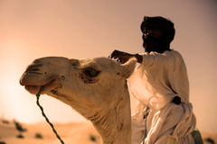 Tuareg with his camel Stock Photos