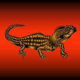 Tuatara lizard gold Stock Photography