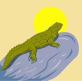 Tuatara of new zealand. Vector Illustration of a Tuatara a reptile endemic to New Zealand vector illustration