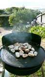 Tuatuas on kiwi bbq Ahipara NZ Royalty Free Stock Images