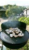 Tuatuas sur BBQ Ahipara NZ de kiwi Images libres de droits