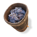 Tub with grapes - clipping path Stock Images