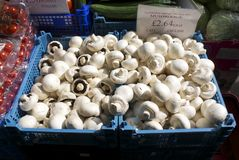 Tub of mushrooms Stock Photo