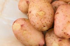 Tub?rculos de batatas cruas novas imagens de stock royalty free