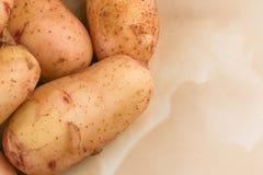 Tub?rculos de batatas cruas novas fotografia de stock royalty free