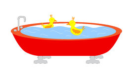 Tub with swimming ducks Stock Photography