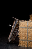 tuba Στοκ εικόνα με δικαίωμα ελεύθερης χρήσης