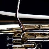 Tuba do ouro no preto imagem de stock royalty free