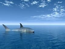 Tubarão ilustração royalty free