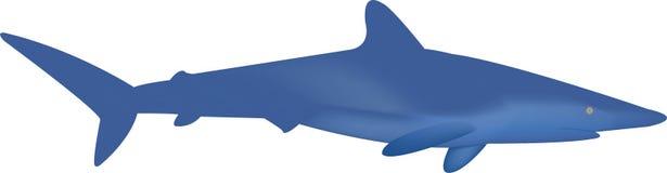 Tubarão ilustração stock