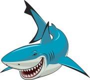 Tubarão branco Foto de Stock