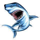 Tubarão com boca aberta Fotografia de Stock