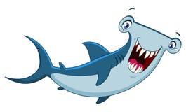 Tubarão de Hammerhead Fotografia de Stock