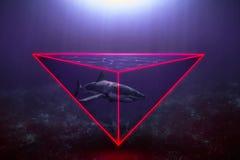 Tubarão de néon foto de stock royalty free