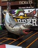 Tubarão do brilho Fotografia de Stock Royalty Free